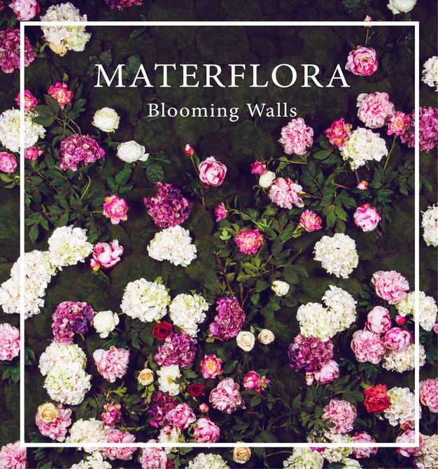Blooming Walls